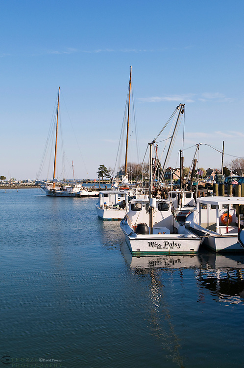 Work Boats or fishing boats, docked in historc Dogwood Harbor on Tilghman Island, Maryland await the next days catch. Seated close to the Chesapeake Bay visitors can meet and talk with multi-generation watermen and learn the rich history of the bay.