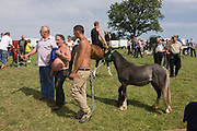Travellers from across the West Country and beyond buy and sell horses at the ancient annual Priddy Sheep (and horse) fair in Somerset, England. Bare-chested men lead a small skinny foal around a field on the outskirts of the village. Set in the Mendip Hills, in the south-western English county of Somerset, the Priddy Sheep fair is host to an odd mix of farmers and travellers (commonly and incorrectly known as gypsies). In this field set aside purely for travellers, many with West Country accents but also with nearby Welsh and Irish too, deals are done with a traditional spit on the hand and a smacking of palms, selling a pony to another family. The Priddy Sheep Fair moved from the city of Wells in 1348 because of the Black Death.