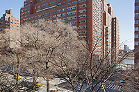 View from 52 East End Avenue