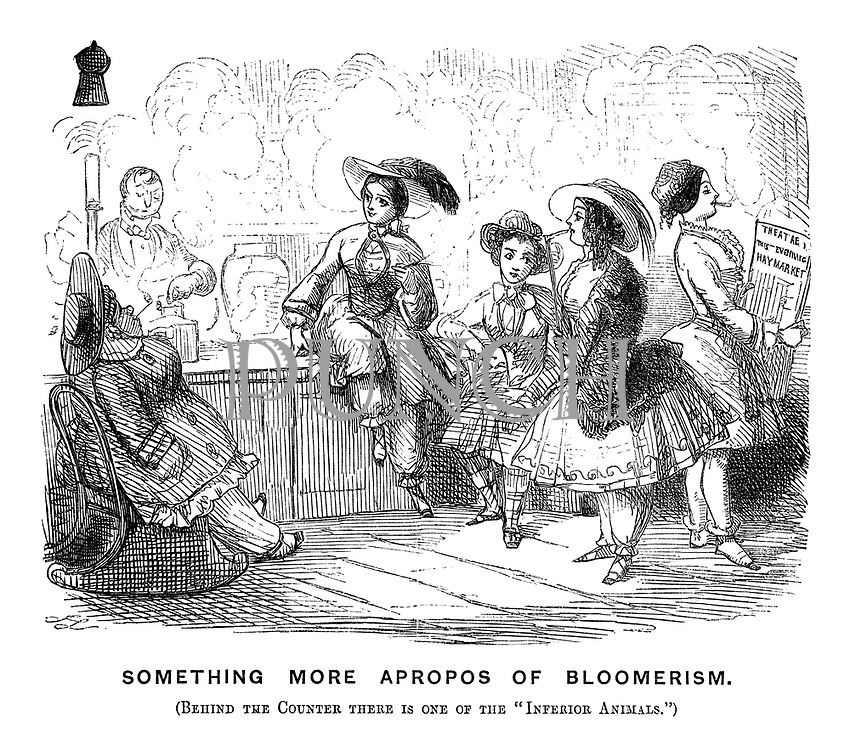 Something More Apropos of Bloomerism. (Behind the counter there is one of the 'inferior animals.')
