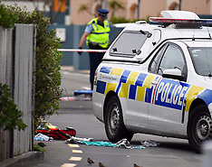 Wellington-Police shoot man after knife threat, Mana