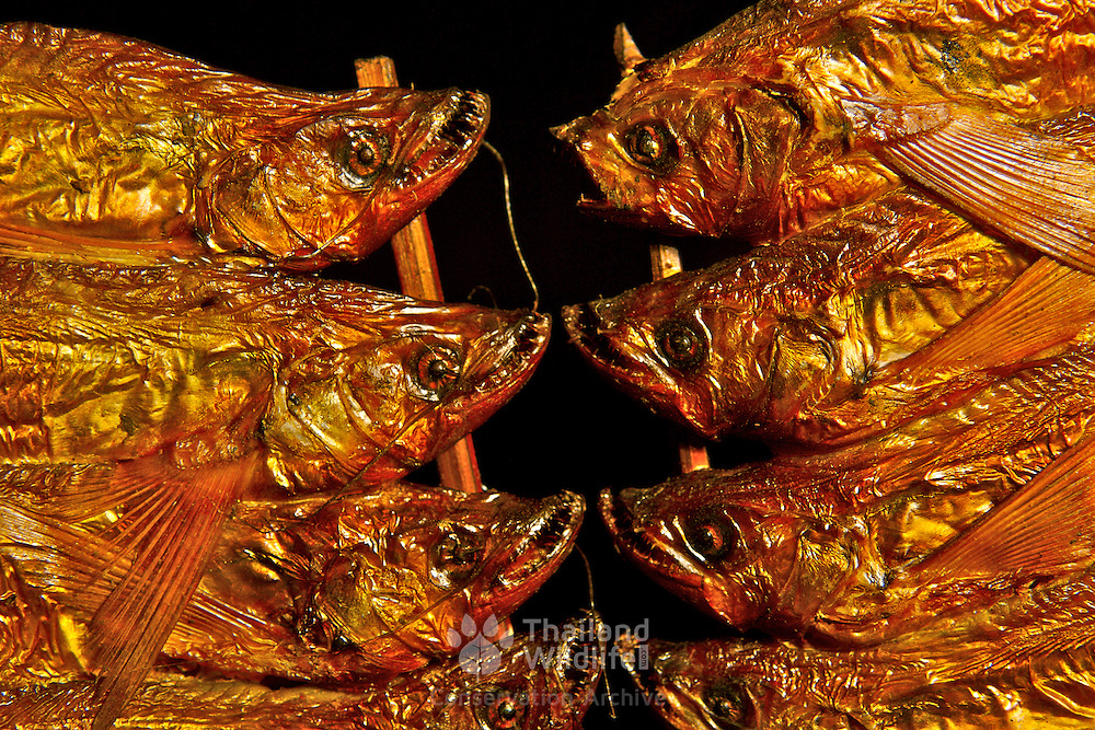 Golden dried and smoked fish on a stick, a common foodstuff for flavouring in Thailand