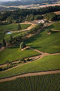 Aerial View over Alexana vineyard, Dundee Hills, Willamette Valley, Oregon
