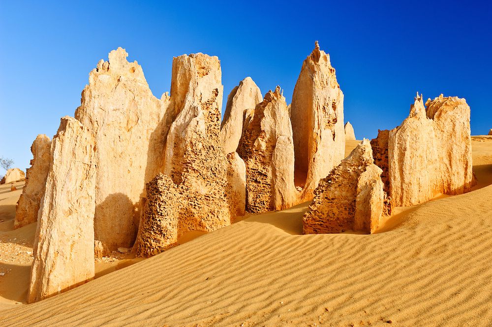 Stock photograph of The Pinnacles in Western Australia. This is an area of natural limestone pillars rising above the yellow sand of the desert. They are formed by the acid leaching of the surrounding, weaker limestone which has left the more resiliant limestone standing above the desert.