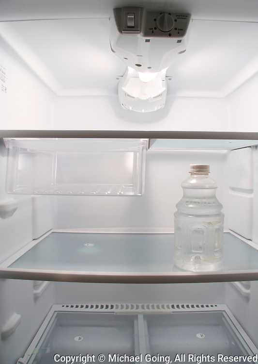Mnochromatic color of the inside of a empty refrigerator with one water bottle