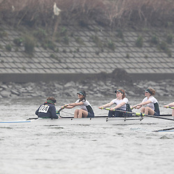 224 - Kings Chester WJ168+ - SHORR2013