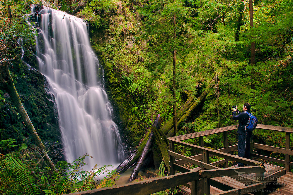 Hiker taking pictures of Berry Creek Falls, Big Basin State Park, Santa Cruz County, California