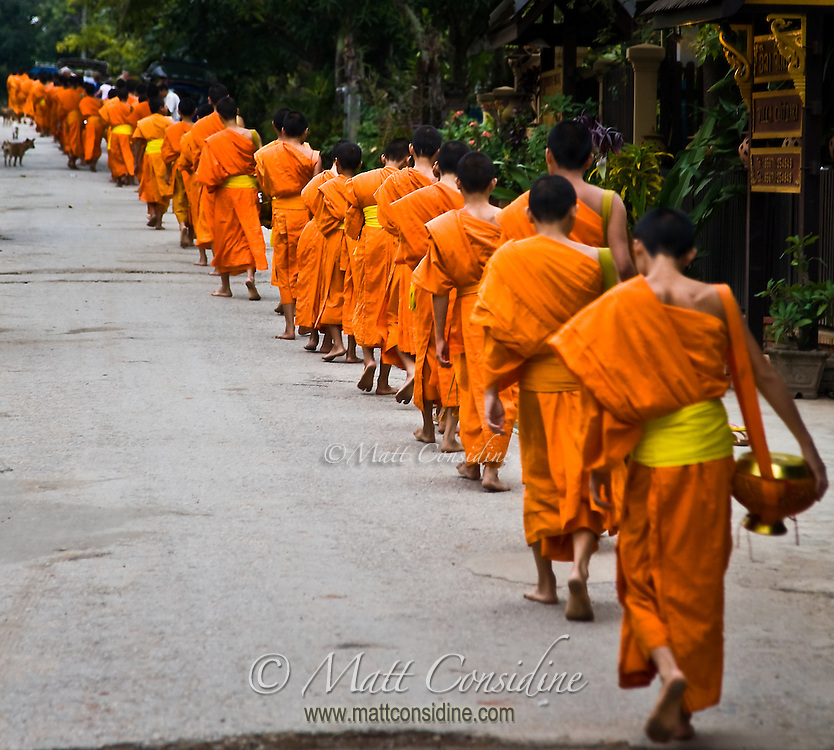 Monks with their alms bowls move along the road towards the end of their morning collection.<br /> (Photo by Matt Considine - Images of Asia Collection)