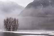 Winter mist in Yosemite valley, Yosemite National Park, California