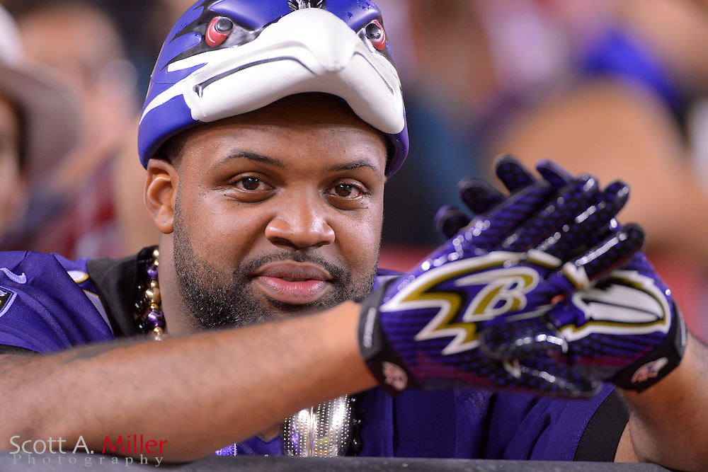 Baltimore Ravens fan during a preseason NFL game at Raymond James Stadium on Aug. 8, 2013 in Tampa, Florida. <br /> <br /> &copy;2013 Scott A. Miller