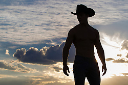 silhouette of a cowboy against a beautiful sky