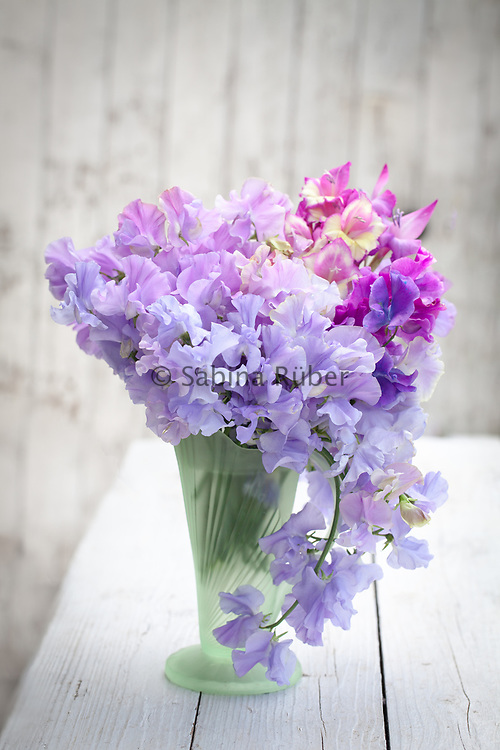 Flower arrangement with sweet peas and glamour glads