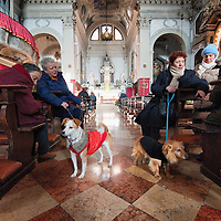 VENICE, ITALY - JANUARY 15:  Owners with their dogs attend a specila service at the Church of S Francesco with a blessing to the pets and animals on January 15, 2012 in Venice, Italy. The blessing of animals and pets is a very ancient tradition dating back from San Francis of Assisi.