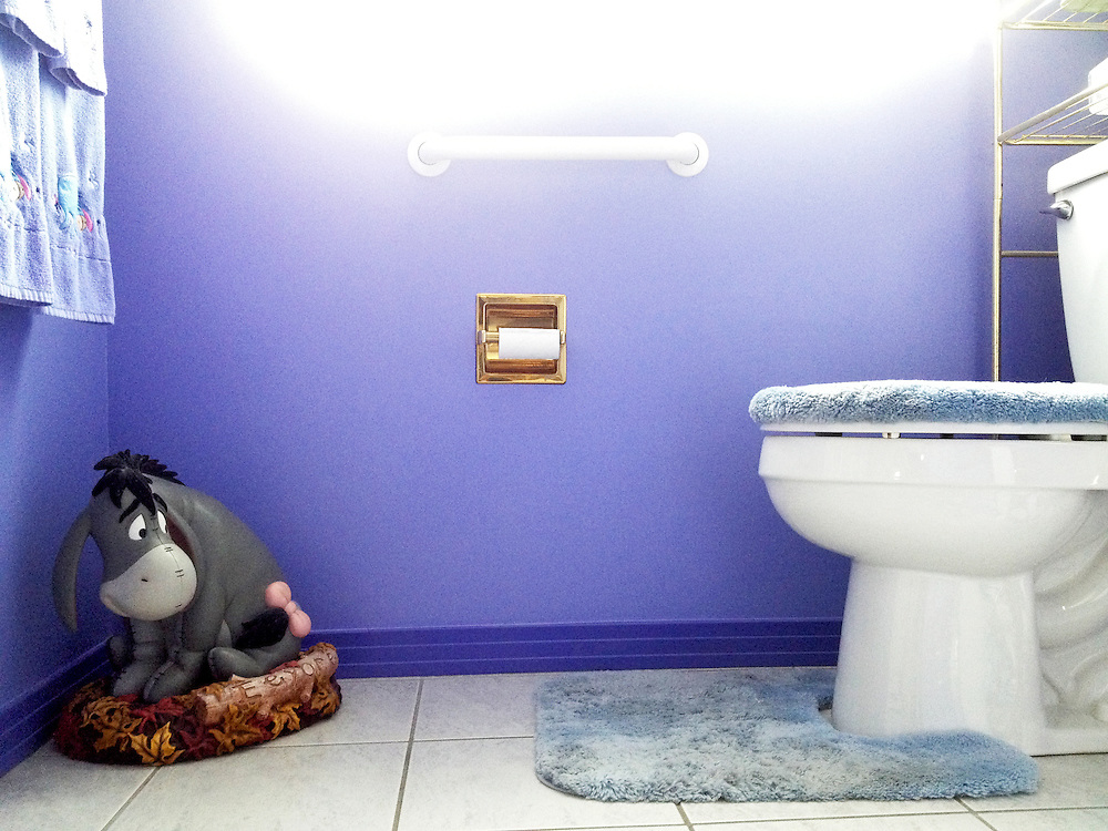 "An Eeyore statue eyes the toilet in what I lovingly and ironically call ""The Happiest Place on Earth,"" Grandpa Roth and Wendi's home in Centennial, Colorado on Thursday, August 08, 2013."
