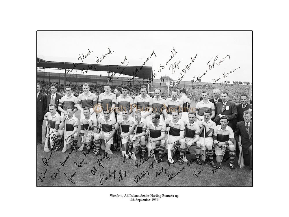 Wexford, All Ireland Senior Hurling Final Runners-up, 5th September 1954