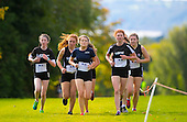 Co. Wexford Cross Country