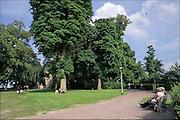 Nederland, Nijmegen, 11-6-2016Mensen genieten van de zon, op het gras van van het valkhof, valkhofpark . Het is een stadspark met de resten van de burcht, palz, van Karel de Grote .Foto: Flip Franssen