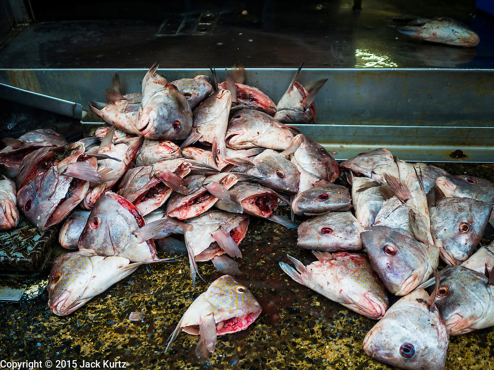 14 AUGUST 2015 - BANGKOK, THAILAND: Fish heads on a sidewalk in Saphan Pla fish market. The heads will be collected and sold. Saphan Pla fish market is the wholesale fish market that serves Bangkok. Most of the fish sold in Saphan Pla is farmed raised fresh water fish. The market is open 24 hours but it's busiest in the middle of the night and then again from about 7.30 until 11 in the morning.       PHOTO BY JACK KURTZ