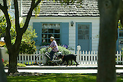 Woman Bike Riding With Her Dog