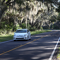 Vehicle drives along the Old Florida Heritage Parkway in Micanopy, Florida. (AP Photo/Alex Menendez) Florida scenic highway photos from the State of Florida. Florida scenic images of the Sunshine State.