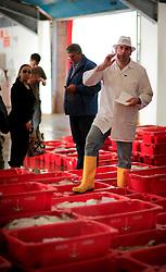 UK CORNWALL NEWLYN 10JUN08 - Fish auction in Newlyn Fish Market at Newlyn harbour in Cornwall, western England...jre/Photo by Jiri Rezac / WWF UK..© Jiri Rezac 2008..Contact: +44 (0) 7050 110 417.Mobile:  +44 (0) 7801 337 683.Office:  +44 (0) 20 8968 9635..Email:   jiri@jirirezac.com.Web:    www.jirirezac.com..© All images Jiri Rezac 2008 - All rights reserved.
