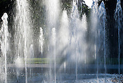 Palmengarten, Wasserballett, Wasserfontänen, Frankfurt am Main, Hessen, Deutschland | Palmengarten, botanical garden in Frankfurt, palm leaves, Germany