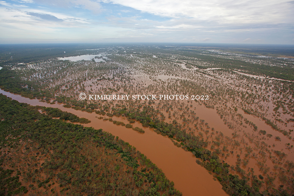The flooded Fitzroy River near Grant's Range