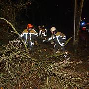 Zuidwesterstorm heeft boom omgewaaid Naarderstraat Huizen