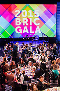 ALL PHOTOS ~ BRIC Gala 2015