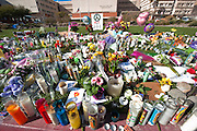 Located at the memorial in front of the University of Arizona Medical Center in Tucson, Arizona. The memorial was placed for the victims of the recent shooting in Tucson.
