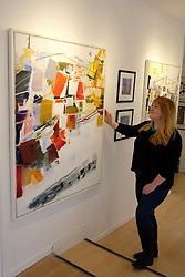 Pictured: Joanna MacAulay, Events & Exhibitions Manager, Upland CIC, was on hand to help get the exhibition ready with the painting by Patti Lean<br /> <br /> More than 30 artists have contributed to Spring Fling's new Place exhibition, which explores sense of space and how it inspires.  The exhibition  at the Otterburn Gallery in Dumfries, will be available until 7 May 2018 <br /> <br /> Ger Harley | EEm Date