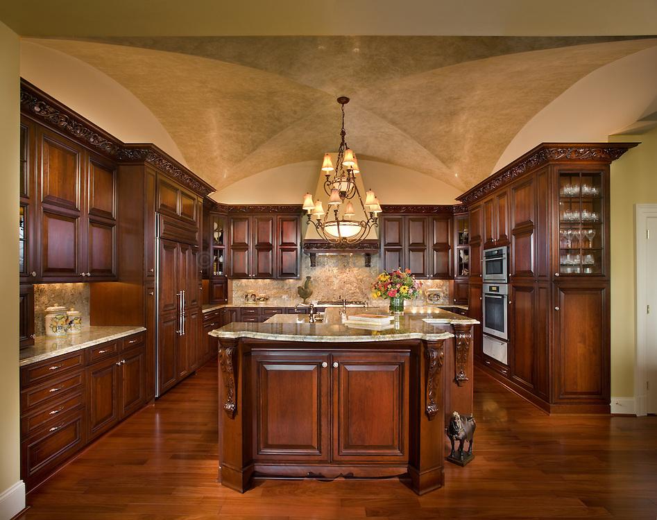 Dark wood contemporary kitchen