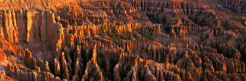 UTAH, BRYCE CANYON NATIONAL PARK sunrise view of the main amphitheatre of sandstone formations seen from the Bruce Point overlook