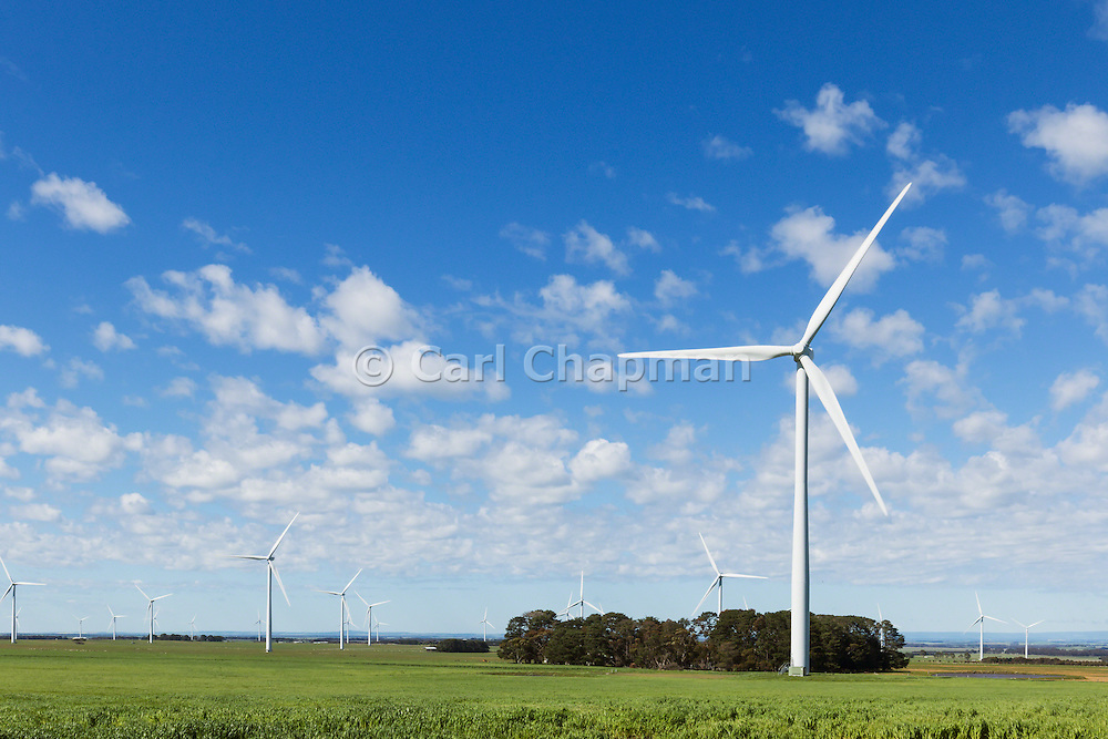 wind turbine in a rural paddock in the countryside at the Mount Mercer wind farm, Victoria, Australia <br />