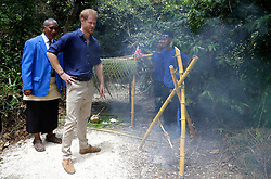The Duke of Sussex meets pupils as he walks through the forest during a visit to Tupou College in Tonga as they visit Tupou College on the second day of the royal couple's visit to Tonga.