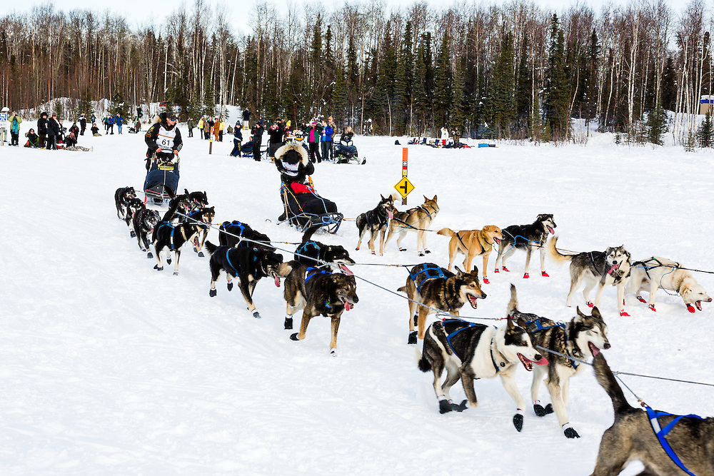 Musher Matt Failor competing in the 41st Iditarod Trail Sled Dog Race passes Cindy Abbot having difficulty pulling out her snow hook on Long Lake after leaving the Willow Lake area at the restart in Southcentral Alaska.  Afternoon.