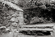 "steps at ""the Witch's Castle"" of Lower Macleay Park - Portland, OR"