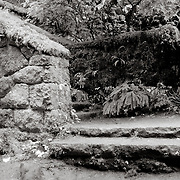 """steps at """"the Witch's Castle"""" of Lower Macleay Park - Portland, OR"""