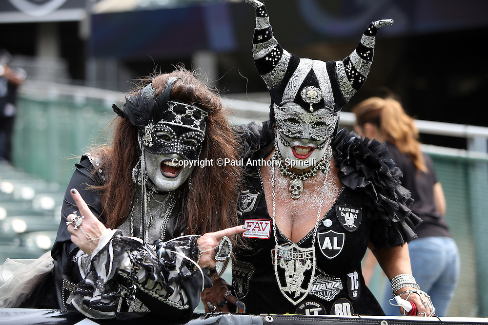 A pair of female Oakland Raiders fans with painted faces and costumes cheer for the team during the 2015 NFL week 1 regular season football game against the Cincinnati Bengals on Sunday, Sept. 13, 2015 in Oakland, Calif. The Bengals won the game 33-13. (©Paul Anthony Spinelli)