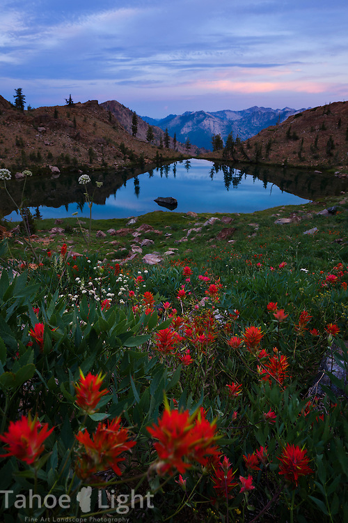 Sunset and wildflowers at Echo Lake in the Trinity Alps wilderness Four Lakes loop backpacking trail in California.