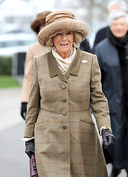The Duchess of Cornwall during Ladies Day of the 2018 Cheltenham Festival at Cheltenham Racecourse.