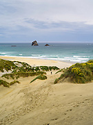 A woman walks down to Sandfly Beach.  High-angle view of Sandfly Beach and Bay, on the Otago Peninsula, near Dunedin, Otago, New Zealand