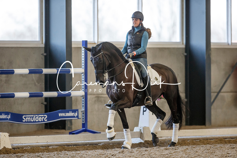 Filion Dominique, (NED), Winicienta<br /> Selevia Hoeve - Werkendam 2015<br /> &copy; Hippo Foto - Dirk Caremans<br /> 18/11/15