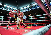 February 21, 2016: Will Madera (L) of USA lands a punch against Randy Lozano of Mexico during their super middleweight bout as part of the Fight Club 18 gala at the Hilton Lac Leamy in Gatineau, Quebec, Canada. (Photo by Steve Kingsman/Icon Sportswire)