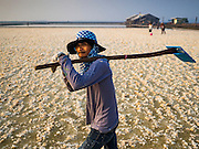 10 FEBRUARY 2016 - BAN LAEM, PHETCHABURI, THAILAND: A worker carries his rake out of the salt fields after raking salt at the beginning of the salt harvest in Phetchaburi province, Thailand. The salt harvest in Thailand usually starts in February and continues through May. Salt is harvested in many of the provinces along the coast, but the salt fields in Phetchaburi province are considered the most productive. The salt fields are flooded with sea water, which evaporates off leaving salt behind. Salt production relies on dry weather and producers are hoping the current drought will mean a longer harvest season for them.      PHOTO BY JACK KURTZ