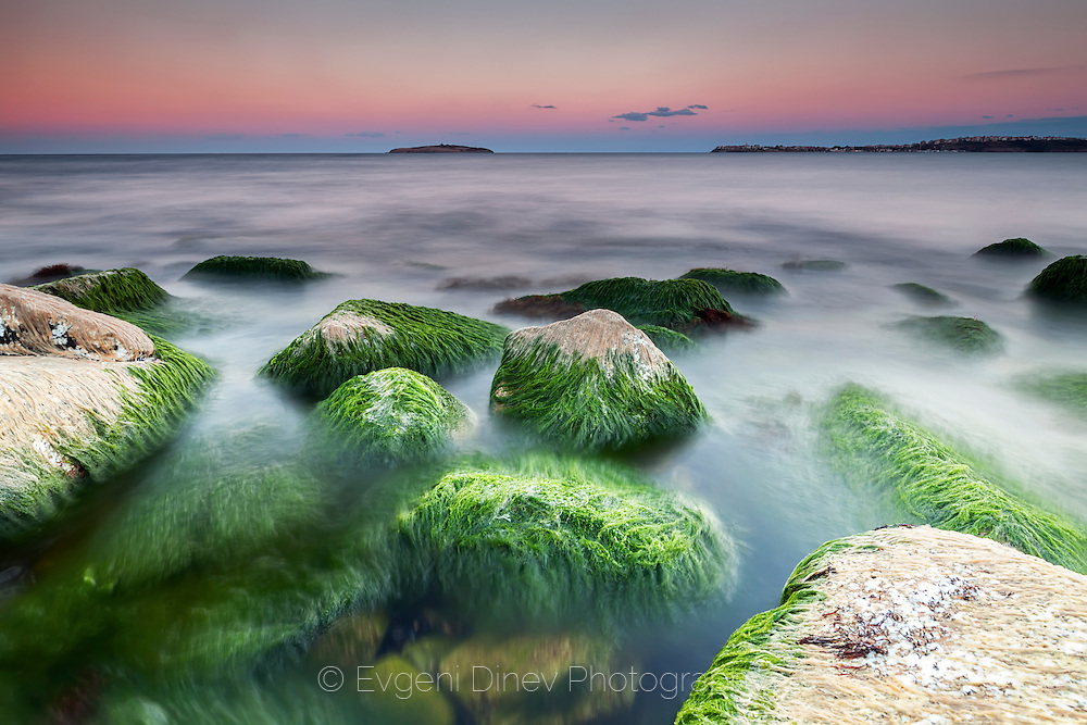 Rocks with seaweeds