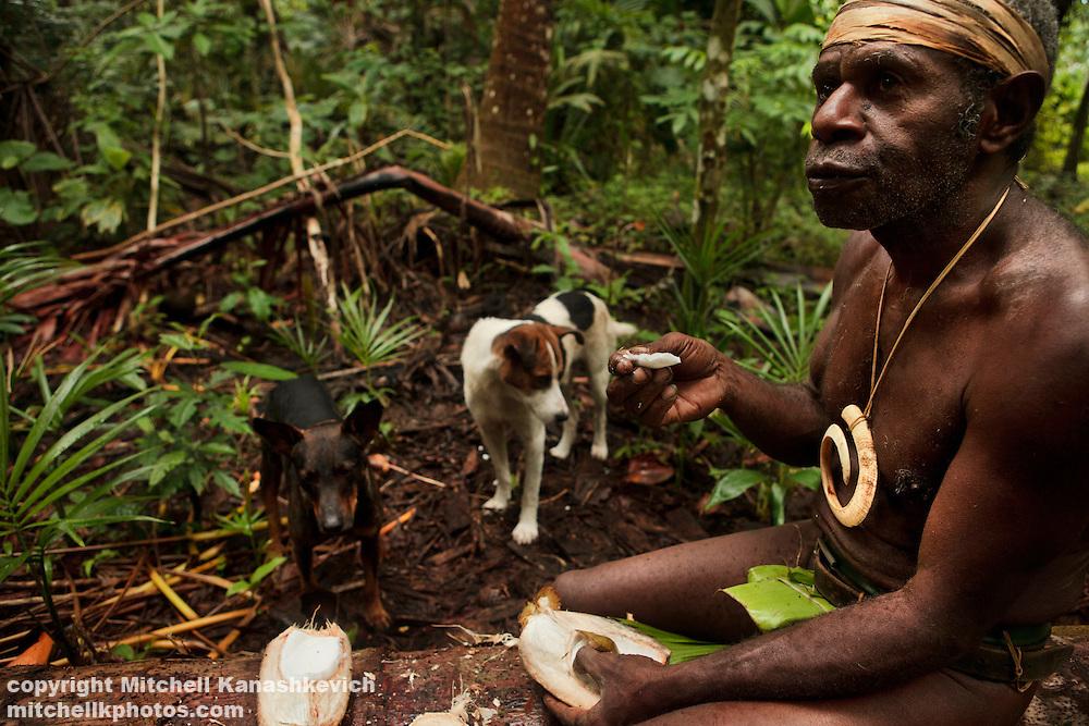 Chief Ayar - a traditional Ni Vanuatu man sits to eat a coconut as his dogs watch. Near the village of Wintua, South West Bay, Malekula, Vanuatu