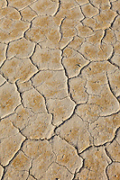 Thule Valley Hardpan (Ibex) Dry Lake Bed cracked mud.
