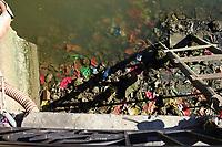 Plastic and paper Rubbish  rubbish on the riverbank
