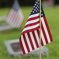 The American Legion Post 49 in Tupelo will put out over 2,200 flags on markers of veterans who are buried at cemeteries in Lee County.